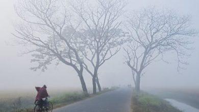 Photo of দেশের ৩ অঞ্চলে শৈত্যপ্রবাহ অব্যাহত থাকবে