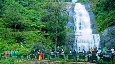 Photo of কানিজ কাদীরের ভ্রমণ কাহিনি 'মাদুরাই' (পর্ব-১৩)