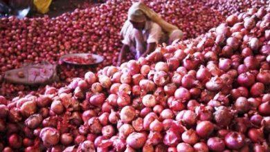 Photo of পেঁয়াজের দাম কেজিতে বাড়ল ২৫ টাকা