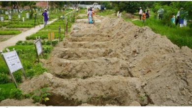 Photo of করোনায় আরও ২২৬ জনের মৃত্যু