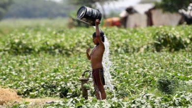 Photo of গরম থাকবে আরও কয়েকদিন