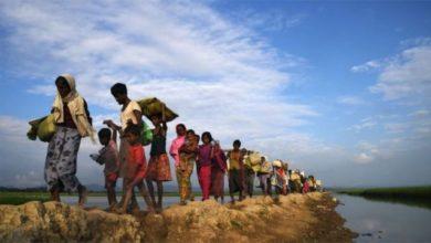 Photo of রোহিঙ্গাদের আরও ১৮ কোটি ডলার সহায়তা দেবে যুক্তরাষ্ট্র